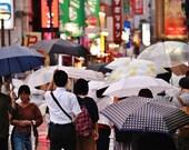 Tokyo Umbrella, Tokyo Photography, Tokyo Poster, Tokyo Gallery Wall Prints, Tokyo Print, Japanese Restaurant Decor, City Photography, Decor