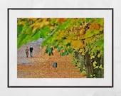 Glasgow Queen's Park Autumn Fall Foliage Photography Print Wall Art
