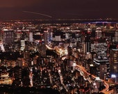 Tokyo Photography, Tokyo Print, Tokyo Poster, Tokyo Photo Print, Tokyo Skyline, City Skyline, City Wall Art, City Prints, City Poster, Decor