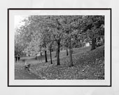 Glasgow Kelvingrove Park, Gallery Wall Prints, Autumn Photography, Glasgow West End Print, Autumn Photo Print, Home Decor Wall Art, Fall Art
