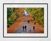 Glasgow Queen's Park Autumn Fall Photography Print Poster