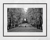 Glasgow Queen's Park Autumn Fall Foliage Black And White Photography Print Wall Art