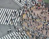 Shibuya Crossing Print, Shibuya Crossing Tokyo Print, Tokyo Photography Print, Tokyo Poster, City Photography Print, City Prints, Tokyo Gift