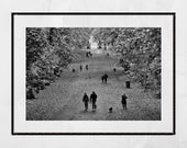 Glasgow Queen's Park Autumn Fall Black And White Photography Print Poster