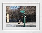 Harlem Photography, Harlem Print, New York Street Photography, Harlem Poster, New York Photography Print, Malcolm X Boulevard, Lenox Avenue