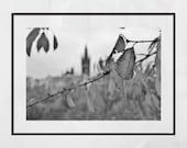 Glasgow University Photography Print, Glasgow University Picture, Glasgow West End Print, Glasgow Poster, Kelvingrove Park, Glasgow Gift,