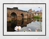 Dumfries Scotland River Nith Devorgilla Bridge Flower Photography Print Poster