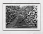 Glasgow South Side, Queen's Park Glasgow, Glasgow Photography, Autumn Photography, Glasgow Print, Glasgow Poster, Glasgow Wall Art, Fall