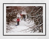 Snow Photography Print, Winter Photography, Snow Print, Queen's Park Glasgow, Winter Picture, Living Room Wall Print, Extra Large Wall Art,