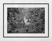 Glasgow Queen's Park Autumn Fall Foliage Black And White Photography Print Poster Wall Art