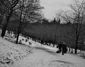 Kelvingrove Park Sledging Winter Photography Print