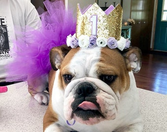 Dog Birthday Hat 1st Crown Girl Party Cake