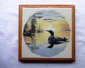 Loon, trivet, 8 inch tile, tile trivet, hot plate, framed art, kitchen, wall hanging, tile mural, cheeseboard, decorative tile, loon, lake