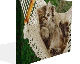 Cute Kitten In Hammock Canvas Print  Wall Art Ready To Hang Or Poster Print