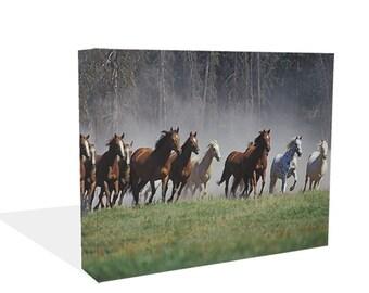 Running Wild Horses Canvas Print Wall Art Ready To Hang Or Poster Print