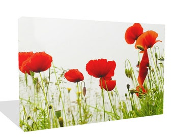 Pretty  Large Red Poppies On White  Print Wall Art Ready To Hang Or Poster Print