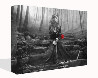Fantasy Sitting Gothic Girl With Red Rose Canvas / Poster Print