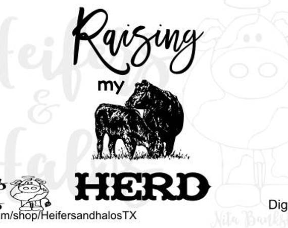 Raising my Herd svg cut file for cricut and silhouette cameo.  Great for t-shirts, decals, yeti cups, and signs.  ranch, farm, ranchy svg