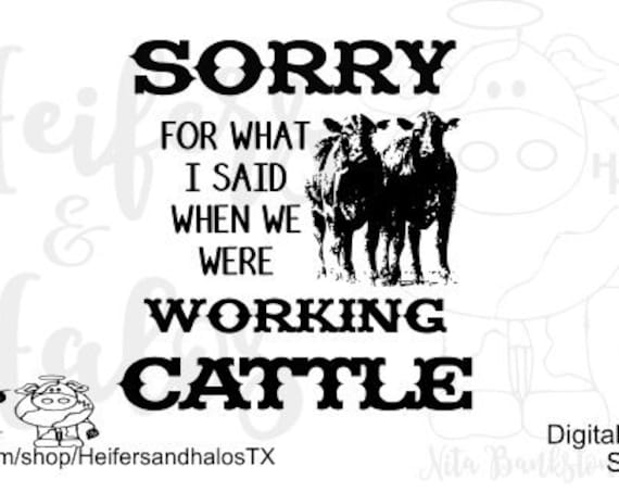 Sorry for what I said when we were working cattle digital cut file, svg, png, eps, dxf, studio3, studio