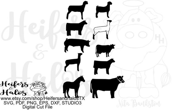 show animals, heifer, lamb, goat, pig, horse, digital files, digital cut file, sheep, cattle, svg, pdf, png, eps, dxf, studio3, studio2