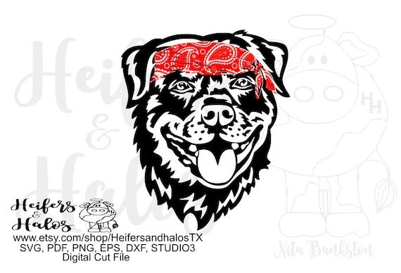 bandana rottweiler digital file, digital cut file, printable, sublimation, svg, pdf, png, eps, dxf, cricut, silhouette