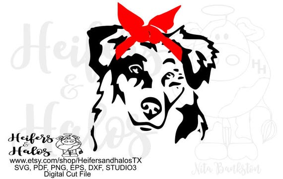 Border collie with bandana, svg, pdf, png, eps, dxf, studio3, print, cut file, sublimation dog