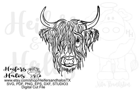 Highland steer, bull, calf, heifer, cow, digital cut file, t-shirt design,  hand drawn, svg, pdf, eps, dxf, cricut, silhouette 3, silhouette
