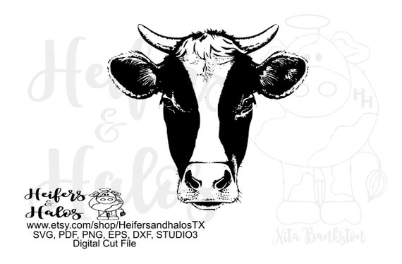 Dairy cow heifer head digital file, printable, sublimation, svg, pdf, eps, dxf, png, digital cut file, cricut, silhouette