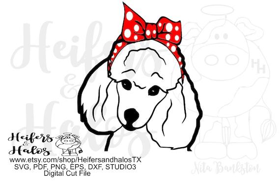 Bandana poodle dog, digital file,digital cut file, printable, sublimation,svg, pdf, png, eps, dxf, cricut, silhouette