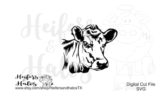 Cow head svg, pdf, png, eps, dxf cut file for cricut and silhouette.  Use for t-shirts, decals, yeti cups