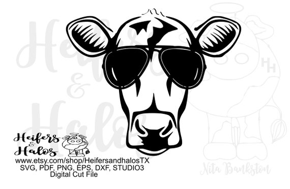 Cow with color changeable sunglasses digital file, print, sublimation, cut file svg, pdf, png, eps, dxf,studio3 heifer, farm, ranch
