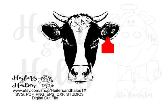Horned heifer cow with ear tag digital cut file, digital file, printable, sublimation, svg, pdf, png, eps, dxf