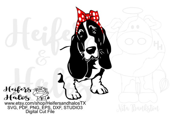 Bandana basset hound dog digital file, digital cut file, printable, sublimation, svg, pdf, png, eps, dxf, cricut, silhouette
