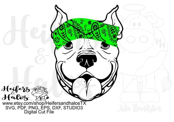 Pitbull bandana digital file, digital cut file, printable, sublimation, svg, pdf, png, eps, dxf, cricut, silhouette, t-shirt design