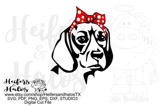 Bandana beagle dog digital file, printable, digital cut file, sublimation, cricut, silhouette, svg, pdf, png, eps, dxf t-shirt design