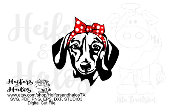 Bandana doxie dachshund digital file, digital cut file, printable, sublimation, svg, pdf, png, eps, dxf, silhouette, cricut