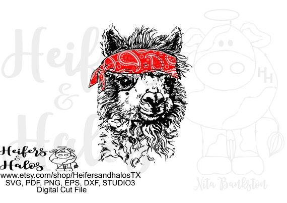 Bandana llama hand drawn digital file, sublimation, printable, digital cut file, svg, pdf, png, eps, dxf