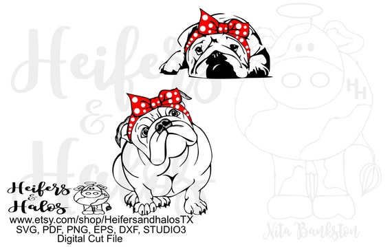English bulldogs with bandana, digital file, digital cut file, printable, sublimation, svg, pdf, png, eps, cricut, silhouette t-shirt design