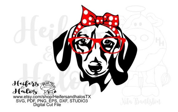 Bandana doxie/dachshund with red glasses, digital file, digital cut file, svg, pdf,png,eps.dxf dog weenie dog,