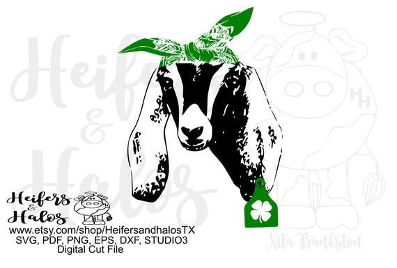 Nubian goat with bandana and lucky shamrock tag, svg, pdf, png, eps, dxf, studio3 digital file, cut file, sublimation, t-shirt design