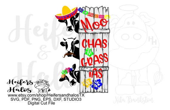 Moo chas gracias digital file sublimation, printable, digital cut file for cricut & silhouette, svg, png,eps, dxf, cow, cinco de mayo