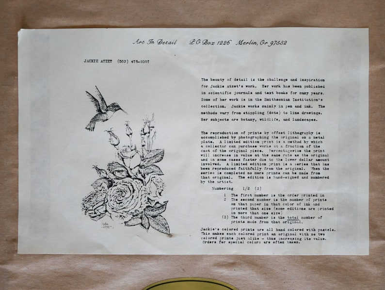 Jackie Atzet butterfly print