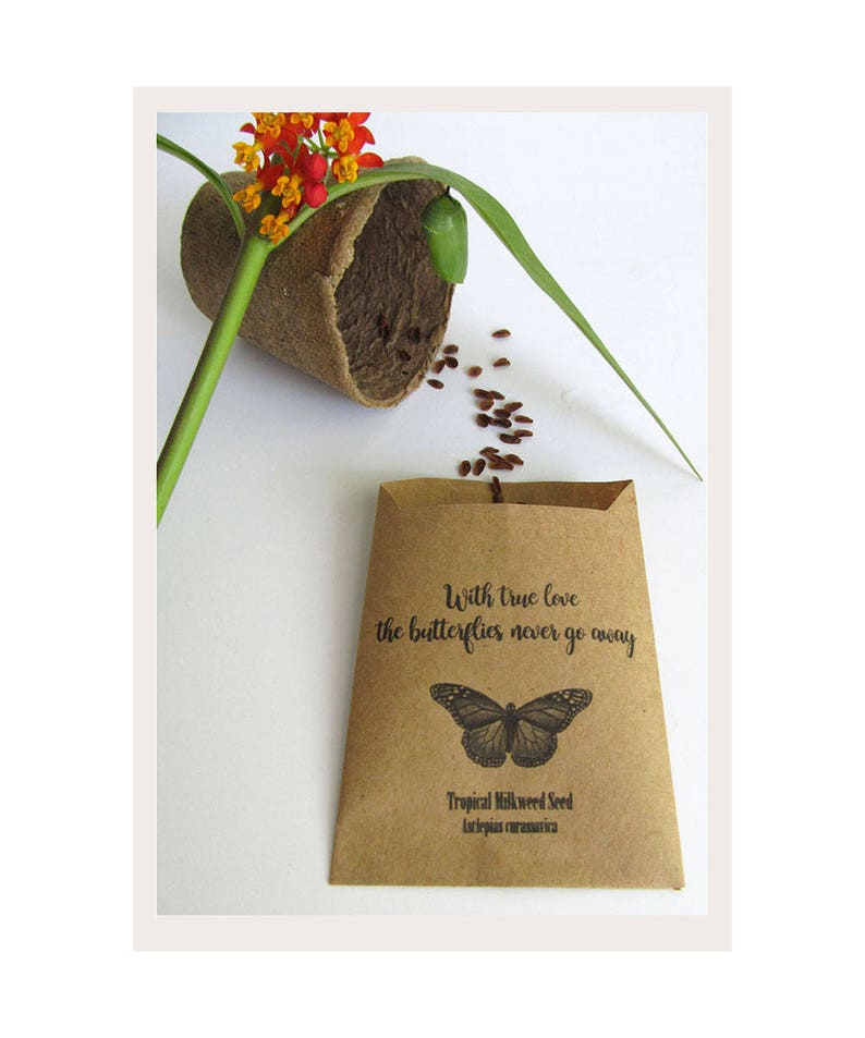 Wildflower Seed Favors Organic Milkweed Flower Seed Favors Etsy