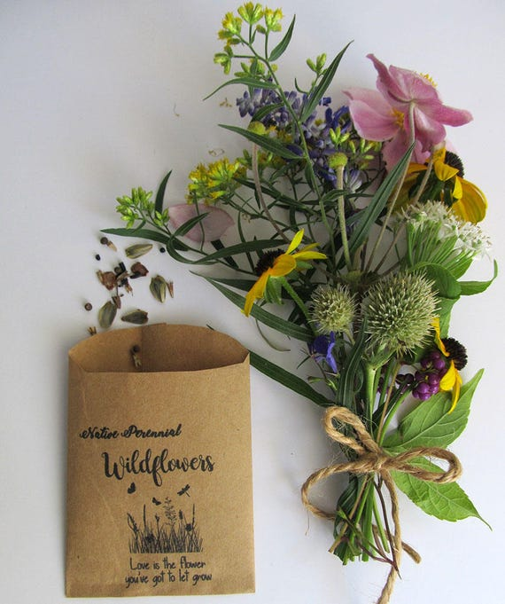 Wedding Favor Wildflower Seeds Organic Native Perennial Etsy