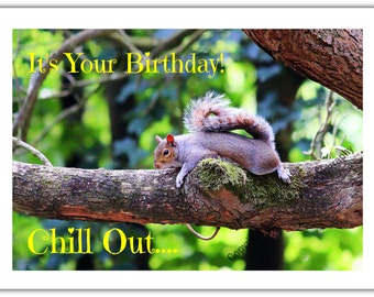 Happy Birthday Greeting Card - A Squirrel Relaxing on a Tree Branch in the Forest - Nature, Wildlife, Animal - Relax It's Your Birthday