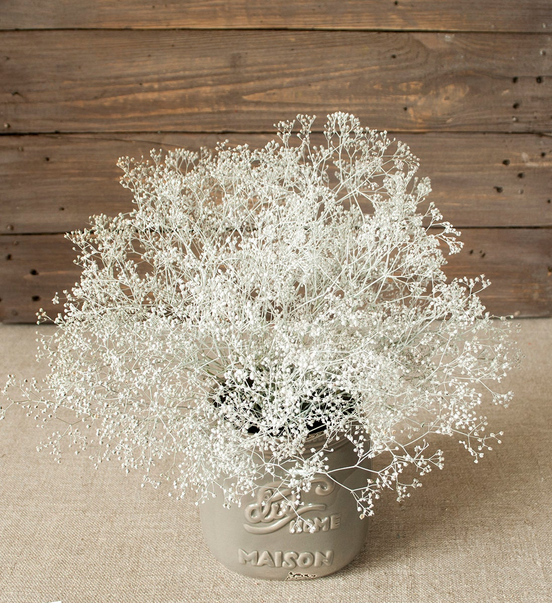 Bunch Of Natural Soft White Dried Babys Breath 08 Oz 24 Etsy