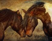 Horses art print or Canvas wrap. Wild Horses, friends, stallion, animals, equestrian, digital art, wall decor, wall art , Xmas gift