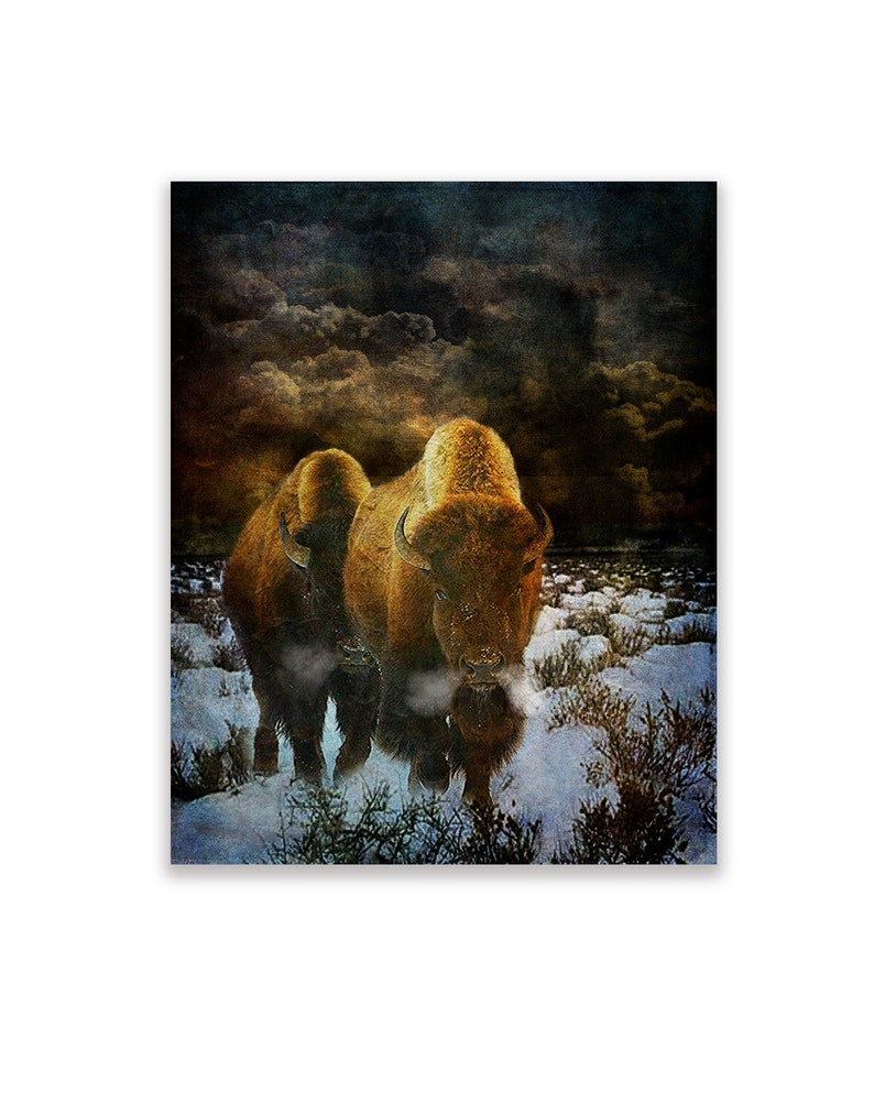 Native American Art Print of 'Storm Bison' American image 0