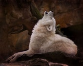 Wolf Art Print White wolf howling. Fine art print or gallery canvas wrap, wolves, dogs, painting, art, Native American, Tribal Spirits Art