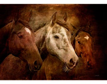 Horses art print or Canvas wrap. Wild Horses, stallion, animals, equestrian, digital art, wall decor, wall art , Xmas gift